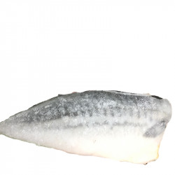 Filete de Caballa bolsa 1kg.