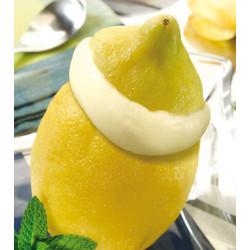 Limón Helado Congelados Lola Cacerola