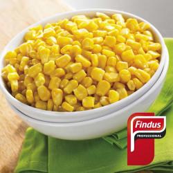 Maiz grano Findus 1kg.